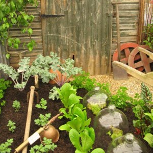 small-vegetable-garden-design